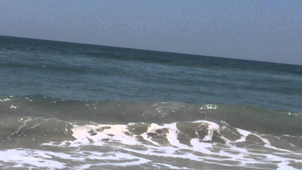 Shark swimming on shore at Topsail Island, NC June 17 ...