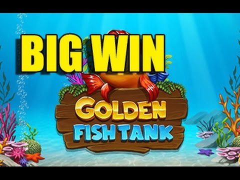 Gold Fish Slots Max Bet Big Win - image 11