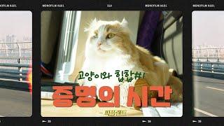 고양이와 힙합#1 증명의 시간 - 피플랜트