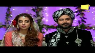 Ghar Titli Ka Par Episode 13 Best Moments 01 | Har Pal Geo
