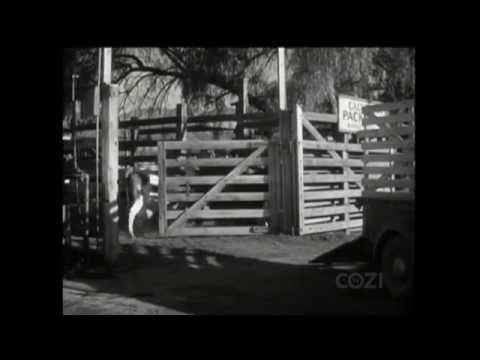 """Lassie - Episode #247 - """"Bessie"""" - Season 7, Ep. 28 - 03/26/1961"""