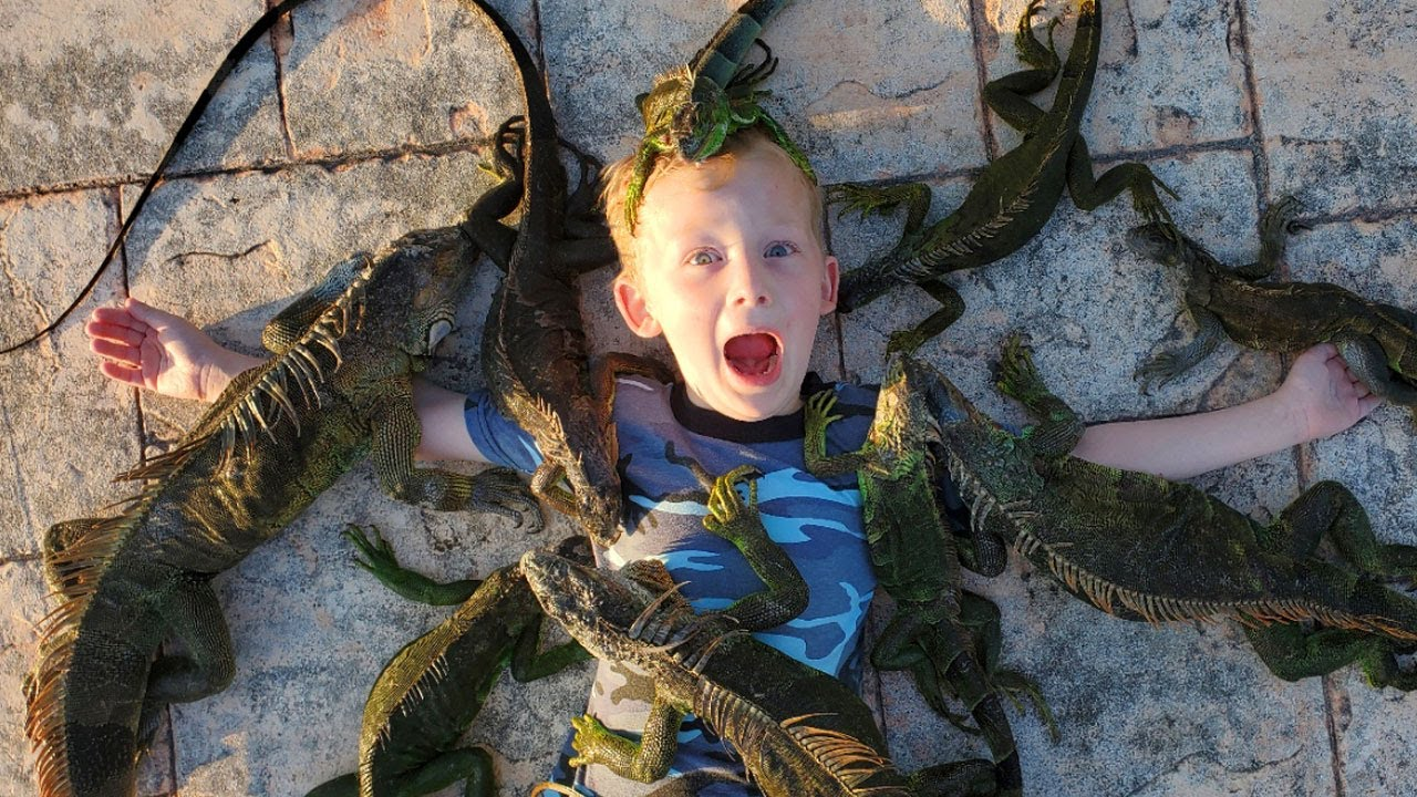 14 Days Fishing & Hunting Invasive Species in Florida (Catch & Cook) - 18 Invasive Species!!!