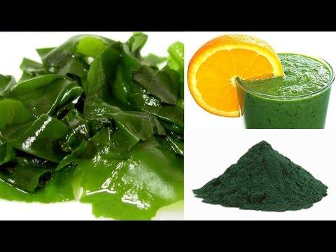Alga Espirulina Para que Sirve - Como Consumir la Espirulina