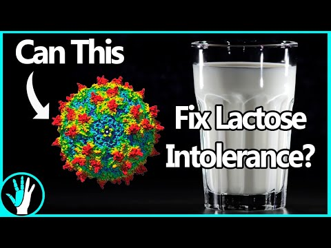 Developing a Permanent Treatment for Lactose Intolerance Using Gene Therapy