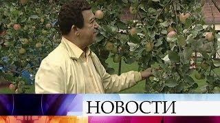 Смотреть видео В Москве скончался народный артист СССР Иосиф Кобзон. онлайн