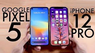 iPhone 12 Pro Vs Google Pixel 5! (Comparison) (Review)