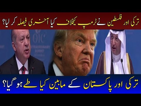 What Steps Taken By Phalistine & Turkey For Donald Trump? | Neo News