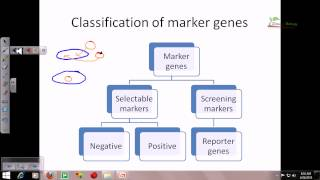 Reporter genes and their importance