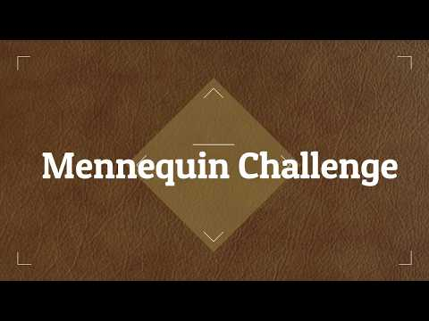 Mennequin Challenge with my classmate Mp3