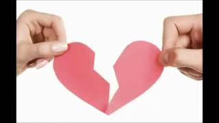 Harmonica S-T Goodbye My Love - Đặng Lệ Quân