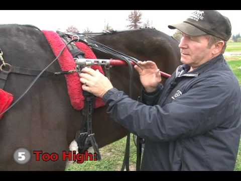 Tips Of The Trade - Staying Level -- USTA Harness Racing Hoof Beats Standardbred