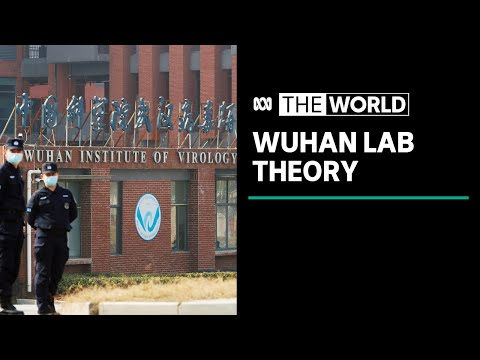 US investigates Wuhan lab leak theory as origin of COVID-19 | The World