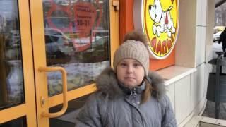 Покупки из зоомагазина для канала Питомцы-онлайн./Liza M животные