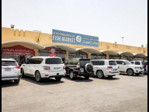 Zayed Port (Mina Fish Market in Abu Dhabi)
