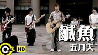 五月天 Mayday【鹹魚】Official Music Video