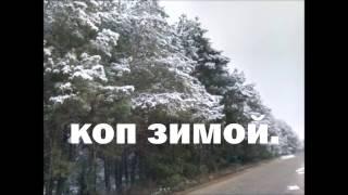 коп. зима