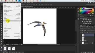 Photoshop Tutorial - How To Create an Animated GIF