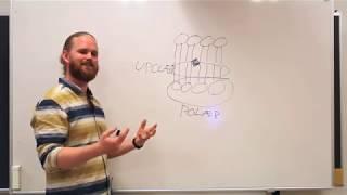 Cellens opbygning | Cellen 2 | Det Fede Fysiologishow, afsnit 3.