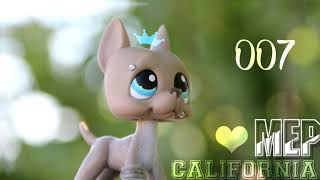 LPS   Mep California white 2115 for 150 subs OPEN