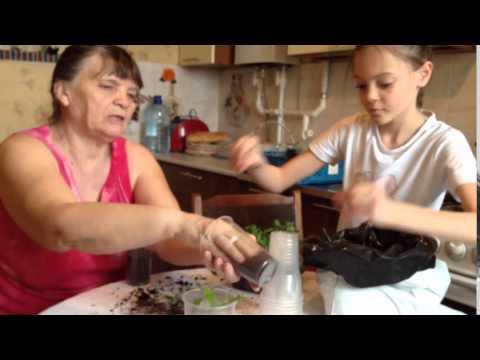 пикируем с бабушкой