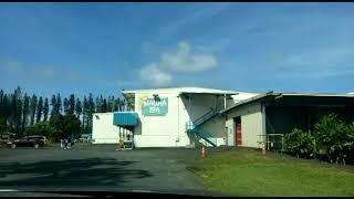 하와이 마카다미아 공장 movie