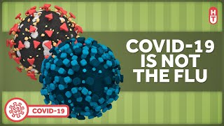 Covid-19 is NOT the Flu