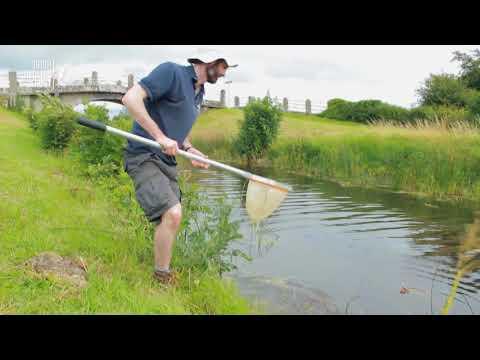 Irish Wildlife Trust - Waterways for Wildlife