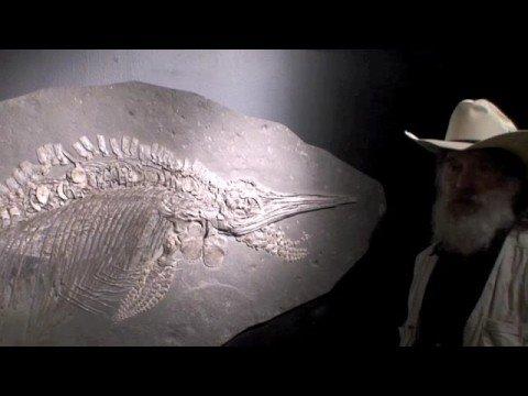 Dr. Robert Bakker - Ichthyosaur fossil