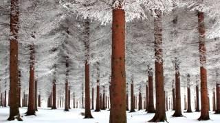 Скачать Андрей Губин Зима холода
