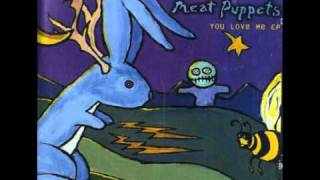 Watch Meat Puppets Monkey Dance video