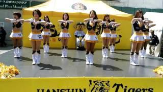 タイガースガールズ ダンスステージ ULTRA TIGER トラッキーとコラボ 2017.4.16 阪神対広島