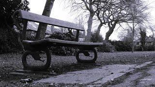 Dark music - The garden (vocal version)