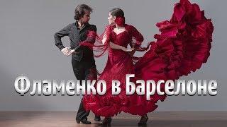 Фламенко. Испанский танец в Барселоне