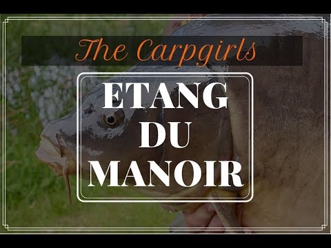 CARP FISHING IN FRANCE ~ Etang Du Manoir Tactics, Rigs, Tips And Bait