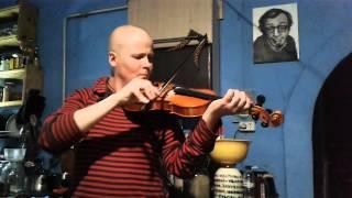 Показ після першого уроку гри на скрипці 12 листопада 2015 р.