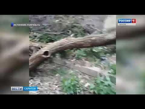 """Жители Заводского района пожаловались на """"ужас 25-го квартала"""""""