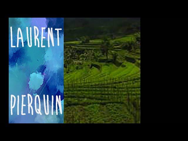 LES RIZIERES POURPRES - GAMELAN VARIATIONS - LAURENT PIERQUIN