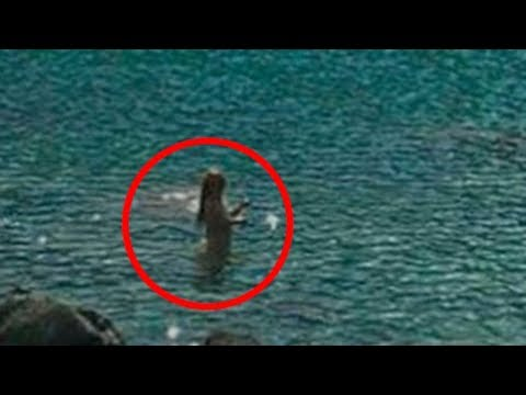 5 Real Mermaids Caught On Camera!