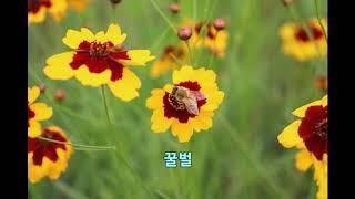대전 유등천과 갑천의 풍경2020 06 28 Untit…