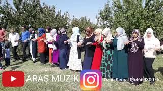 Aras müzik halay Ozan keman Piyanist Ferdi