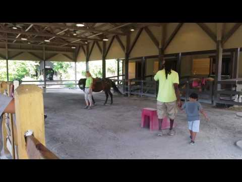 Horse Riding at Turtle Back Zoo