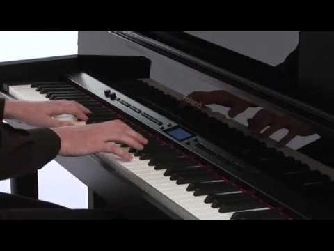 LX-10 Digital Piano Introduction