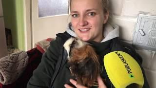 Emilia z Rancza Laszki  i jej zwierzęta