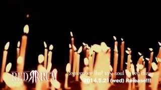 REDRUM  「Remember that my soul never dies」 MV spot