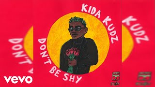 Kida Kudz - Don't Be Shy (Official Audio)