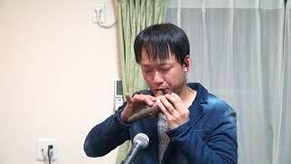 ドリカムの「Love Love Love」をオカリナで吹いてみました。 私のオカリナ演奏を聴いて頂きありがとうございました! これからもオカリナ演奏でい...