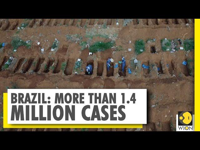 Brazil's COVID-19 death toll exceeds 60,000   Coronavirus   World News
