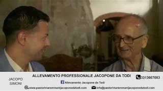 L'allevamento Jacopone da Todi in radio su #LiveRadio