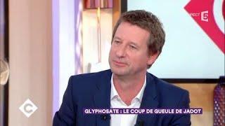 Glyphosate : le coup de gueule de Yannick Jadot - C à Vous - 29/11/2017