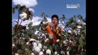 видео Что такое лавсан – какие из него получают волокна и ткани